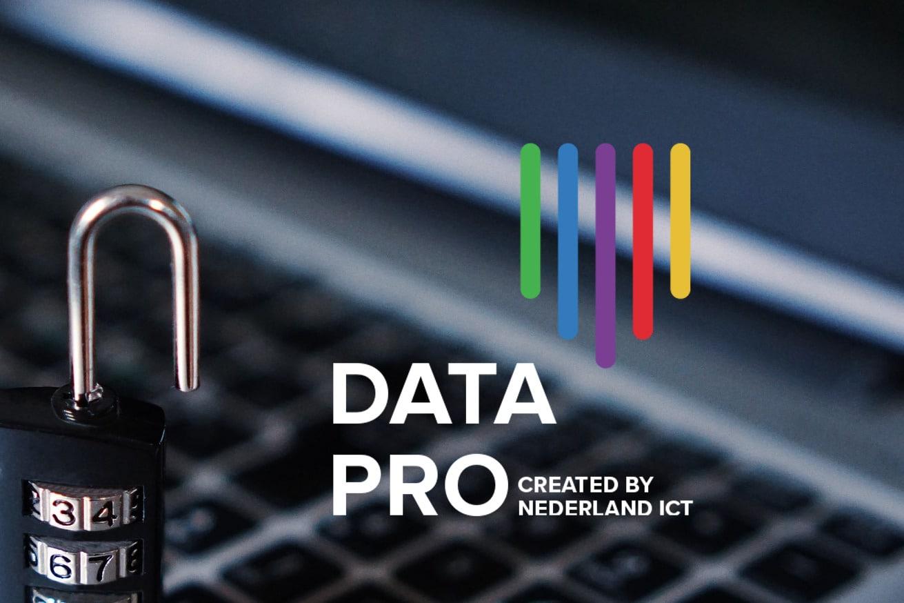 Data Pro Nederland ICT